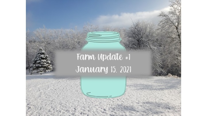 Farm Update #1: January 15, 2021